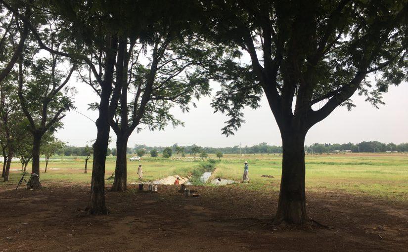 Ein Wochenende in Bildern / Indien 2.-3. Juni