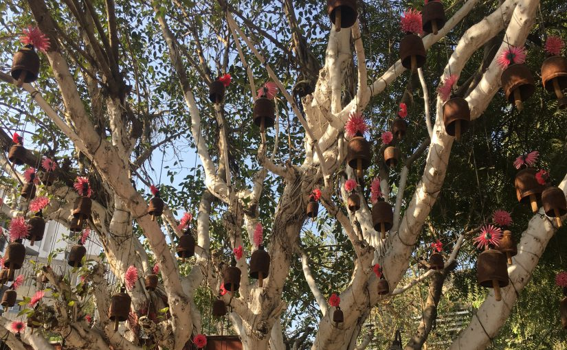 Der menstruierende Baum oder mit der Spirale hat das nichts zu tun.